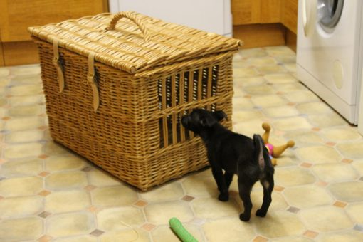 pet carrier made in uk